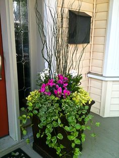 15 fresh and easy summer container garden flowers ideas 00001 Front Porch Plants, Front Porch Flowers, Front Door Planters, Outdoor Planters, Porch Planter, Tall Planters, Container Flowers, Flower Planters, Flower Pots