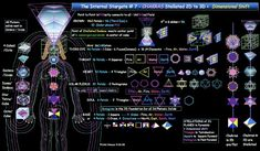 °Sacred Geometry & Chakras