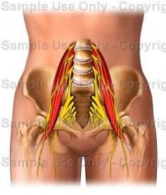 AN INSTRUCTIONAL PROGRAM for SELF-TREATMENT OF TIGHT PSOAS MUSCLE PAIN Get out of pain through a comfortable process under your control. Psoas...