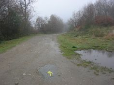 yellow arrow Arrow, Country Roads, Yellow, Camino De Santiago, Arrows
