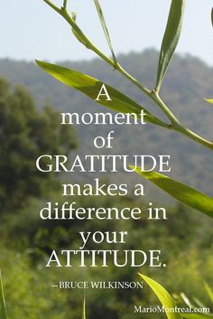 A moment of gratitude makes a difference in your attitude. — BRUCE WILKINSON #YourPositiveReinforcement