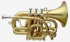 Pocket Trumpet, Hammond Organ, Horns, Music, Instruments, Musica, Horn, Musik, Muziek