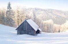 Šumava in the winter - The Šumava Mountains in winter – a feast for all the senses! Bergen, Cherries, Czech Republic, Hungary, Croatia, Poland, Explore, Mountains, Group