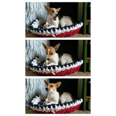 Crochet Dog Basket - designed and made by Agapantha - 2013