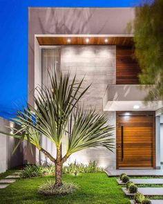 tiles and grass pathway, small palm tree, flower bed, small backyard landscaping ideas, small bushes