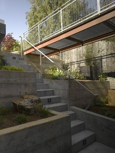 Randall Street Residence - modern - landscape - san francisco - Levy Art & Architecture