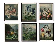 37 Art Print Sets Ideas Art Print Set Print Sets Art