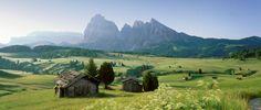 Alpe di Siusi (Seiser Alm) alpine pasture in South Tyrol
