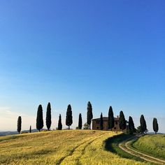 Spring in Pienza! #tuscany #valdorcia #pienza #aroundsiena