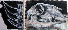 *Tingjian; sketchbook; skull; tonal range; primary source observation*