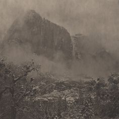 Takeshi Shikama - Silent Respiration of Forests -Yosemite #9, 2010/2011 from Silent Respiration of Forests - Yosemite platinum and palladium print on gampi 7 1/2 x 7 1/2 inches Edition 5 of 9
