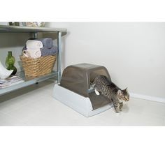 Buy ScoopFree Ultra Litter Box at Argos.co.uk - Your Online Shop for Cat litter and litter trays, Cat, Pet supplies, Home and garden.