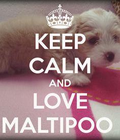 Maisy!!