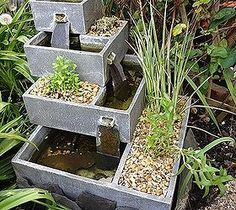 Putting Aquatic Plants in a Water Fountain Planter