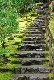 Natural stone stairs with moss. can i find someone to build these for me??