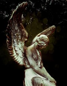 Cemetery photo by Sonja Quintero. 11 x 14 Fine art print.Beautiful angel wings at a historic cemetery in East Dallas. Cemetery Angels, Cemetery Art, Gold Bokeh, Angel Wings Wall Decor, Gothic Angel, Angels Among Us, Angel Statues, Angel Art, Religious Art