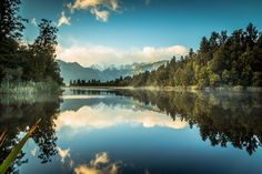 Lake Matheson, South Island, New Zealand. Bill Gibson-Patmore. (curation & caption: @BillGP). Bill😄✔️