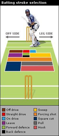 Cricket Batting Stroke Selection