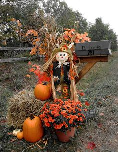 Mailbox.... curb appeal for autumn and Fall!!!! mailbox decorations are probably theeee most important part of establishing curb appeal!!  It's the very lst thing they see