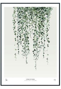 String og Pearls-print
