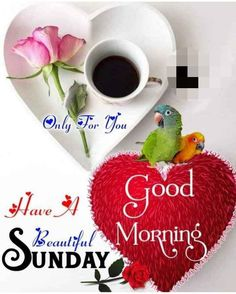 Happy Sunday, Weekend Days, Christmas Ornaments, Holiday Decor, Christmas Jewelry, Christmas Decorations, Christmas Decor