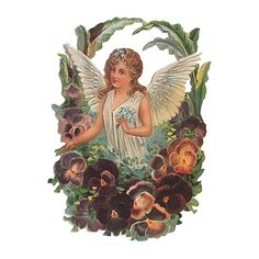 Large Angel with Pansies Scrap ~ Germany