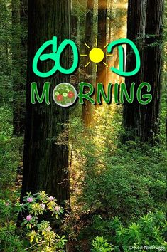 Morning Greetings Quotes, Good Morning Messages, Morning Images, Good Morning Quotes, Good Morning Coffee, Good Morning Good Night, Morning Wish, Good Night I Love You, Good Morning Flowers Gif