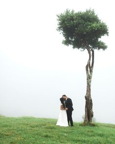 One Tree Hill Bridal Portrait After A Beautiful Wedding Ceremony On Foggy Day At Weddings