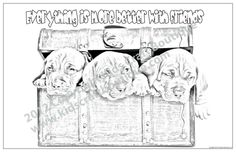 7 unique 11 x 17 inch posters in each pack, created from original animal photographs and ready for your child to color Animal Posters, Motivational Sayings, Your Child, Children, Kids, Photographs, Animals, Unique, Color