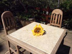 Flor caída... no detalhe, acaba alegrando a nossa mesa!