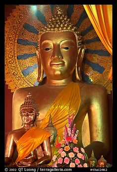 Buddhism is the fourth largest religion of the world. The Buddha is a spiritual development that helps a person in discovering the true nature of life.