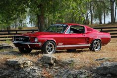 Mystical Build Mustang to benefit The American Cancer Society