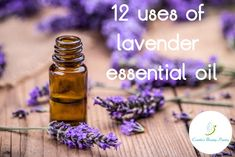 Cosette's Beauty Pantry: Twelve uses of lavender essential oil