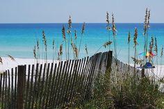 my happy place. Henderson Beach State Park, Destin, FL
