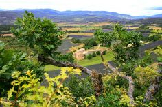 Photo Enregistrée depuis panoramio.com Entre les branches...SAINT JEAN de SAULT...VAUCLUSE...FRANCE. https://fr.pinterest.com/pin/85075880442320410/