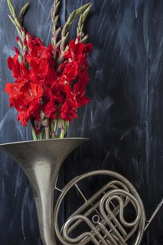 French Horn With Gladiolus.