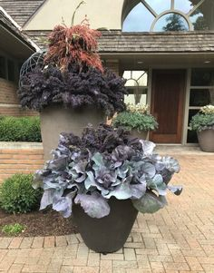 Dirt Simple | Gardening and Landscape Blog by Deborah Silver Outdoor Christmas Planters, Outdoor Pots, Fall Planters, Container Design, Container Plants, Container Gardening, Winter Window Boxes, Garden Works