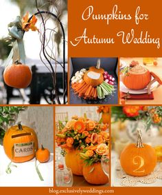 Pumpkins for autumn wedding decor | Read more: http://blog.exclusivelyweddings.com/2014/07/24/let-mother-nature-decorate-your-fall-wedding/