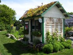 shed rooftop, flowers, gardening, landscape, outdoor living