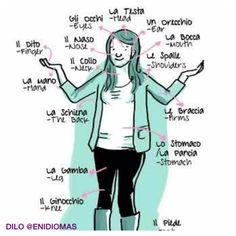 What's inside me in Italian? #HumanBody #LearnItalian