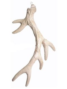 Find rustic wedding decorations for your DIY tablescapes like this adorable, artificial antler centerpiece in beige. Perfect to use as a hanging ornament in your home for a country look and a touch of