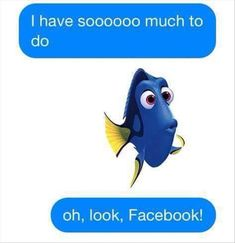 Funny Pictures, Funny Quotes, Cartoons, Memes