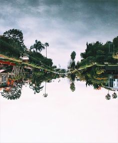 Sometimes turning your world upside down makes a lot of sense. Live adventurously. Live like there is no box. That's #TheMotiWay!   Sick capture by @_priscillalee  at Venice Canals California    HELLO SPRING COLLECTION! Come scoop up all the new gear! Link in bio.  www.motisupply.com   #neverstopexploring #wanderlust #explore #goexplore #exploring #adventuretime #venicecanals #liveadventurously #lifeofadventure #getoutstayout #getoutside #roadtrip #optoutside #hiking #adventure #exploremore…
