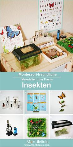 Montessori-friendly materials on insects. What materials we use to learn together about insects. Montessori at home. Science Montessori, Montessori Blog, Montessori Education, Montessori Toddler, Easter Activities, Science Activities, Preschool Crafts, Crafts For Kids, Diy Gifts For Dad