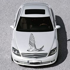 BEAUTIFUL BIRD FLIES ANIMAL ART DESIGN HOOD CAR VINYL STICKER DECALS SV1277