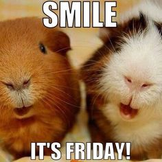 Smile it's Friday!