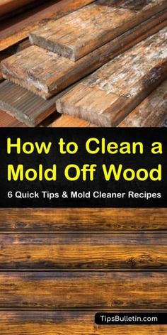 If you have a mold problem, let us show you how easy it is to use common household items to kill mold. Whether you have black mold growing in your drywall and studs or mold growth in your shower, cleaning mold doesn't have to be hard. Cleaning Mold, Household Cleaning Tips, Cleaning Recipes, House Cleaning Tips, Cleaning Hacks, Shower Cleaning, Household Items, Household Cleaners, Green Cleaning