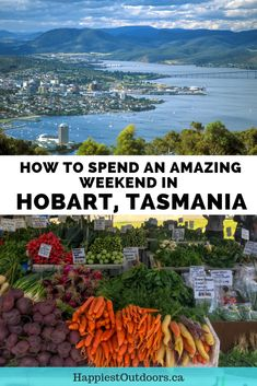 How to spend the weekend in Hobart, Tasmania: Itinerary. Find out how to spend 2 days in Hobart Tasmania. Where to eat, sleep, shop and sightsee. Tasmania Road Trip, Tasmania Travel, Melbourne, Sydney, Places To Travel, Travel Destinations, Travel Tips, Travel Abroad, Travel Advice