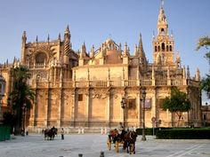 the most magnificent and awe-inspiring gothic cathedral IN THE WORLD! la catedral de sevilla (early 15th century; la giralda- 12th century, as part of the preexisting mosque)