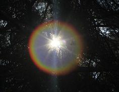 La variación de exposición a la luz solar afecta a la edad de inicio del trastorno bipolar